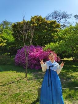 Rosa adorning traditional Korean clothing > TheRoamingNoodle