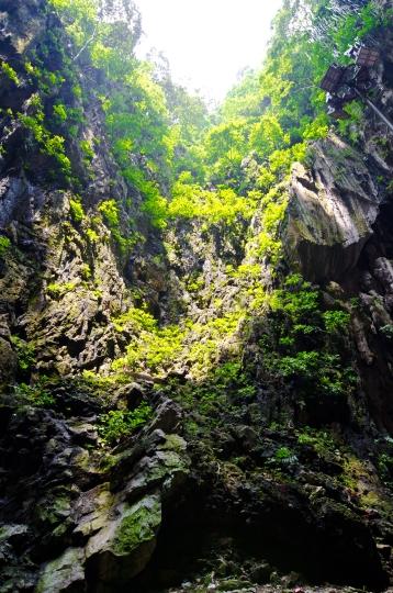 Batu Caves > Kuala Lumpur > TheRoamingNoodle