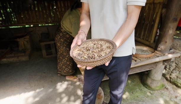 Bali Pulina > Bali > TheRoamingNoodle