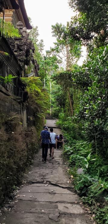 Campuhan Ridge Walk > Bali > TheRoamingNoodle